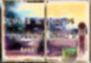 _DSC5572-Edit - Copy.jpg