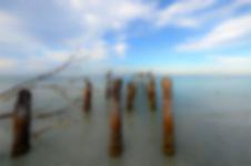 DSC_0236-Edit - Copy.jpg