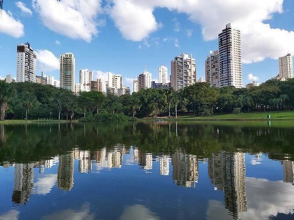 Parque Vaca Brava.jpg
