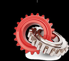 RED&BRONZE GEAR2.jpg