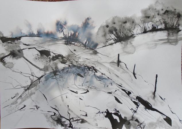 Dartmoor impressions 2 (1) (1024x726).jp