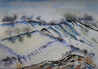 Snowy Fields Dartmoor re sized.jpg