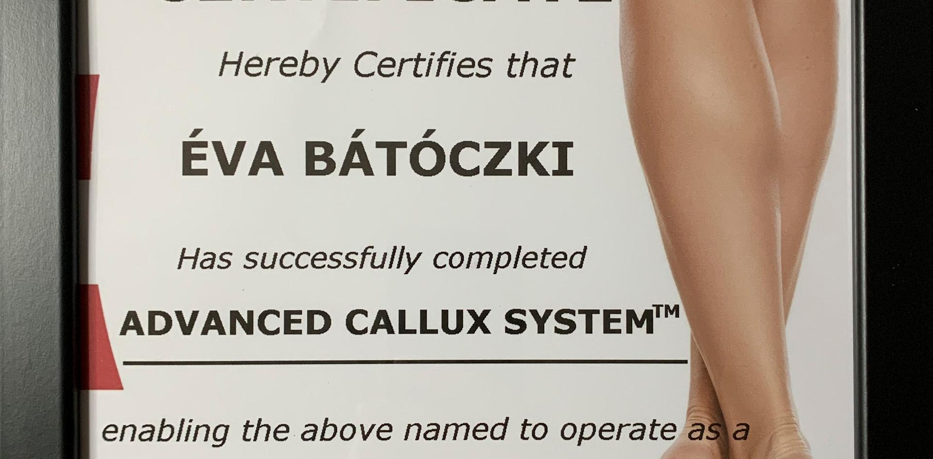 Master Diplôme Callux Pro - Éva Bátóczki