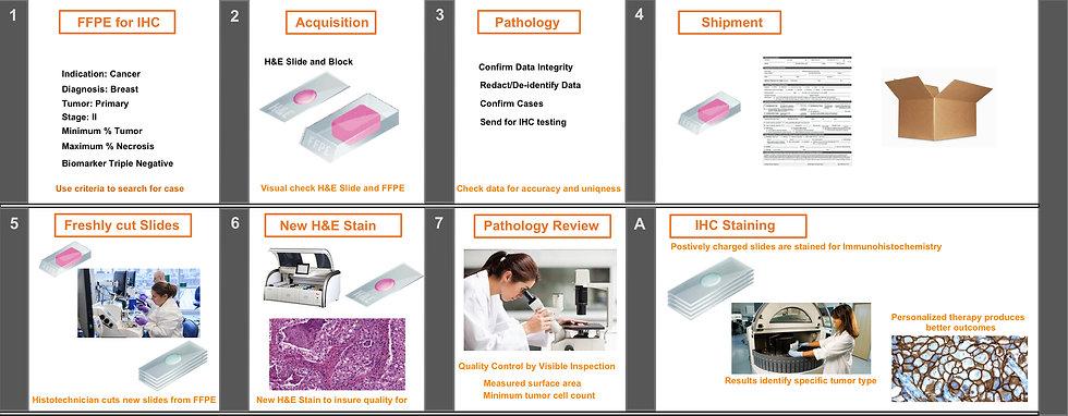 FFPE Sample selection IHC.jpg