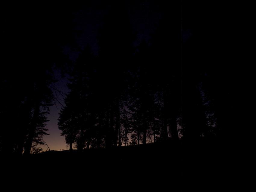 7.dawn