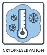 Pluristyx cryopreservation.jpg