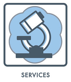 Pluristyx services.jpg