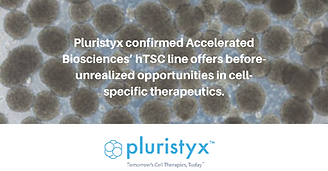 Accelerated Biosciences' Immune-Privileged Human Trophoblast Stem Cells (hTSCs) Offer Breakthrough Opportunities in Cancer-Targeting Therapeutics and Regenerative Medicine Treatments   Business Wire