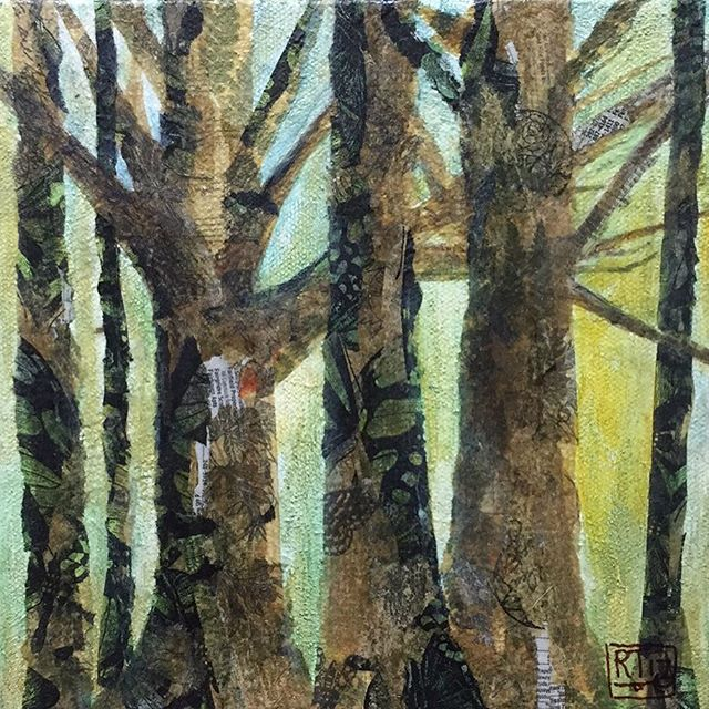 Woodland  6x6 gallery wrapped canvas. Paper Collage.jpg