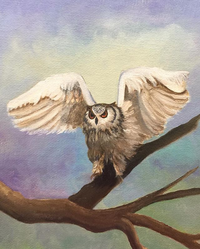 _Wise Guy_  6x8 oil  #oilpainting #oilpainter #painting #hoot #wiseguy #wise #nerdoftheforrest #arti