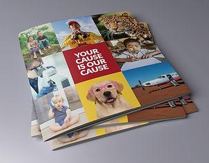 PGSoar brochure.jpg