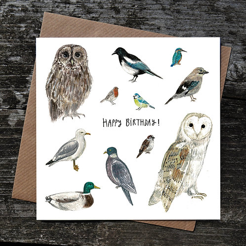 British Birds Birthday Card