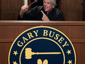 GARY BUSEY: PET JUDGE to Debut May 25
