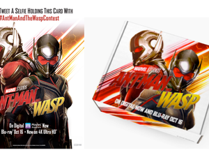 Disney's ANT-MAN AND THE WASP Comes to NYCC on Friday 10/5