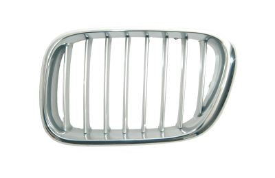 Bmw X5 2000-2006 Mpv Front Grille Grille Silver / Chrome Surround Left Hand
