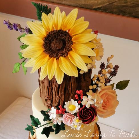 Woodland Log Slice Wild Flower Wedding Cake New Forest