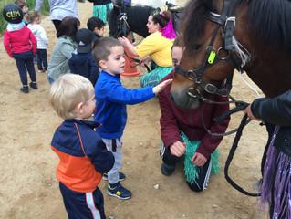 Sortie scolaire avec les poneys pour les TPS-PS