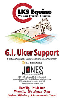 G.I Ulcer Support