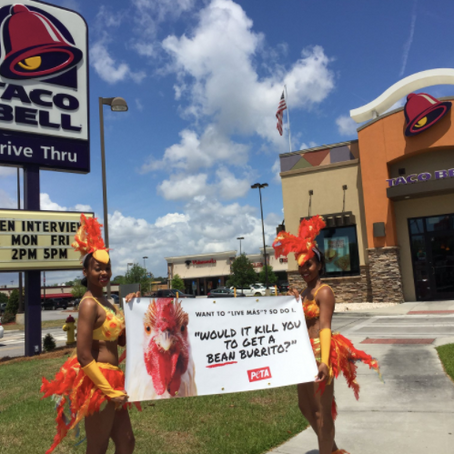 PETA's 'sexy chicks' hand out free Taco Bell burritos