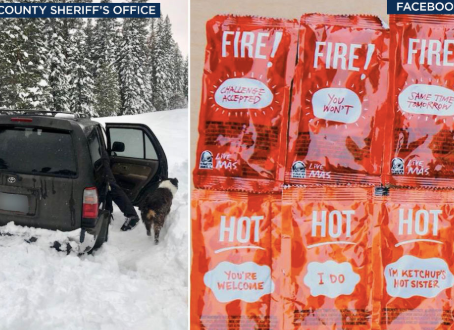 Man, dog survive 5 days in Oregon snow: 'Taco Bell fire sauce saves lives!'