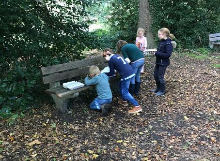 3LA en 3LB gingen naar het park met hun schatkist op zoek naar schatten in het bos