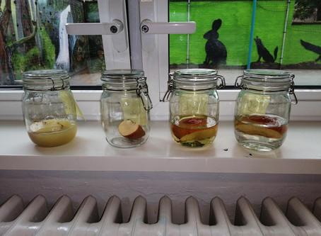 Nijntjesklas: thema appels en peren