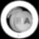 FIA Georgia Logo - png (1) copy.png