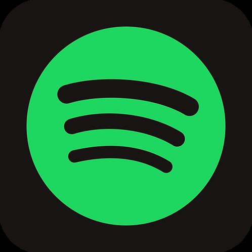 Promo Spotify
