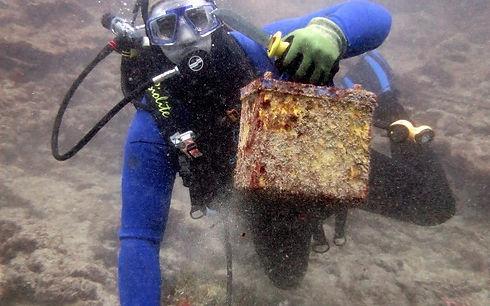 Ocean Rescue.jpg