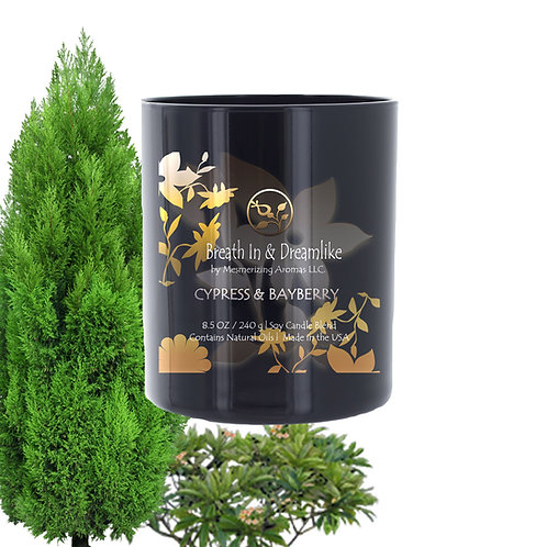 8.5 oz Cypress and Bayberry Candle