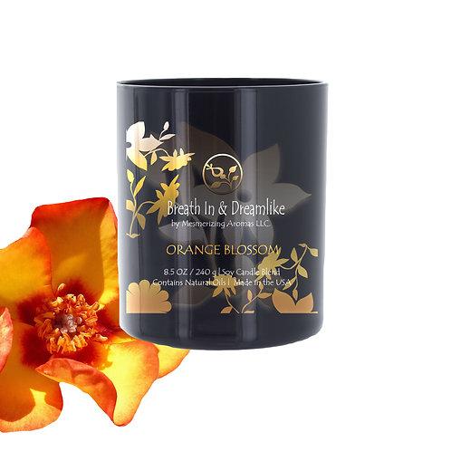 8.5 oz Orange Blossom Candle