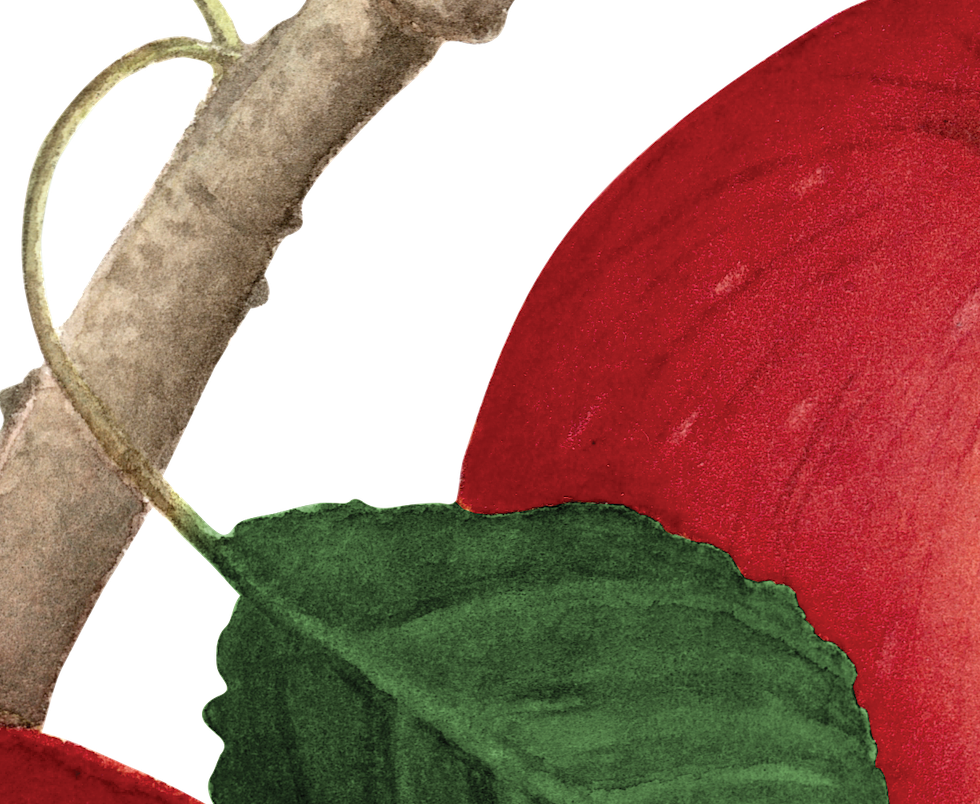 Apple png.png