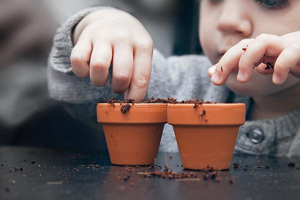 Potting_Seeds.jpeg