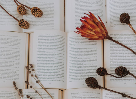 WHAT'S YOUR PERFECT FALL READ?