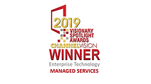 2019 Visionary Spotlight Award logo lock