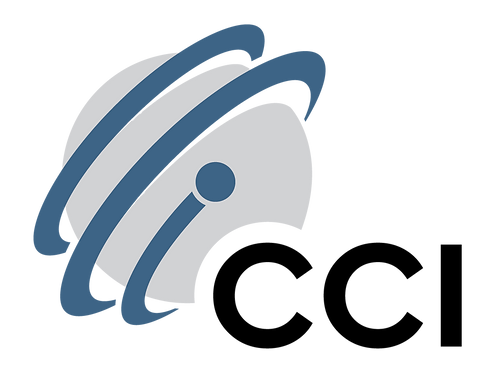 CCI Network Services