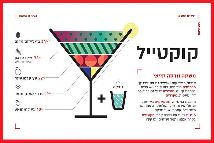 israel_infographics_ronilevit_GardenDrin