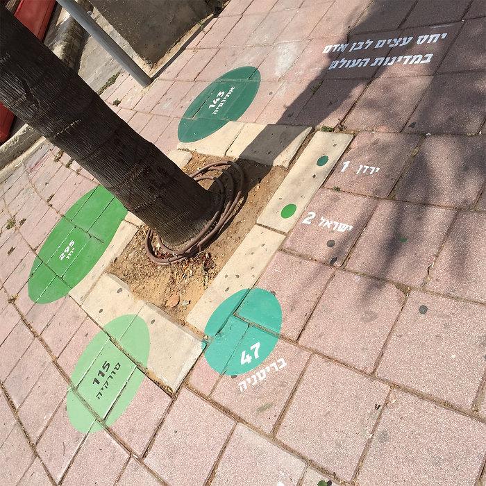 israel_infographics_ronilevit_SpatialDiagram_tree.jpg