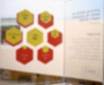 israel_infographics_ronilevit_SpatialDiagram_bee.jpg