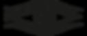ODYSSEY_BLACK_VERTICAL crop.png