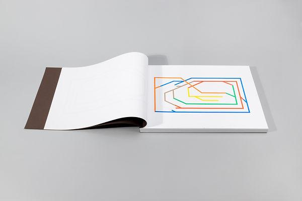 Seven Coloured Lines, 2020, 127 risograph prints, bound, slipcase, 42x29.7x2.5cm.jpg