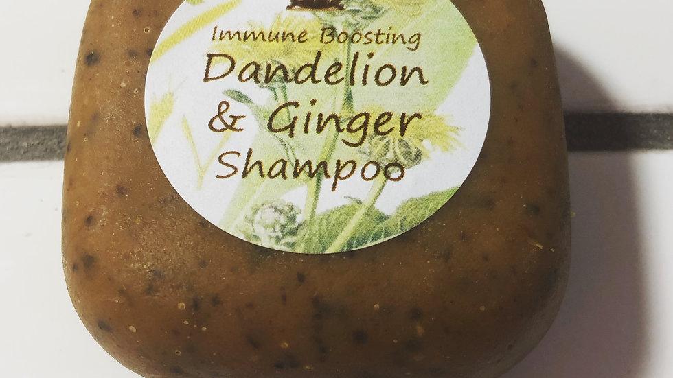 Immune Boosting Dandelion & Ginger Shampoo