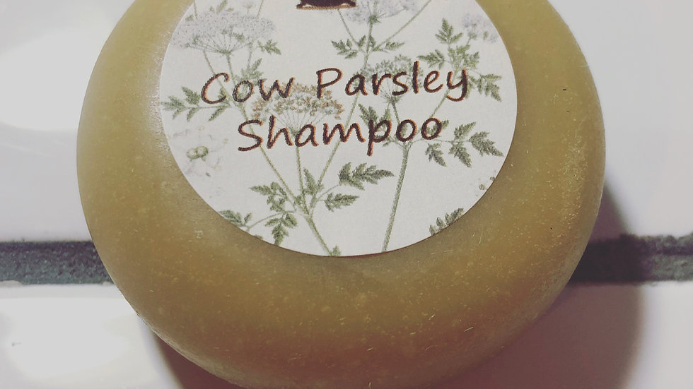 Cow Parsley Shampoo