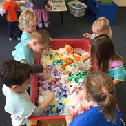 Sensory - Introduce and experience a variety of tactile materials including playdough, water, sand, snow, flour, etc.
