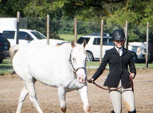 Huntington Co 4-H Fair Horse and Pony Show (Sunday)