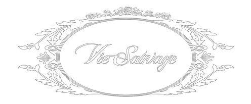 Vie white logo.jpg
