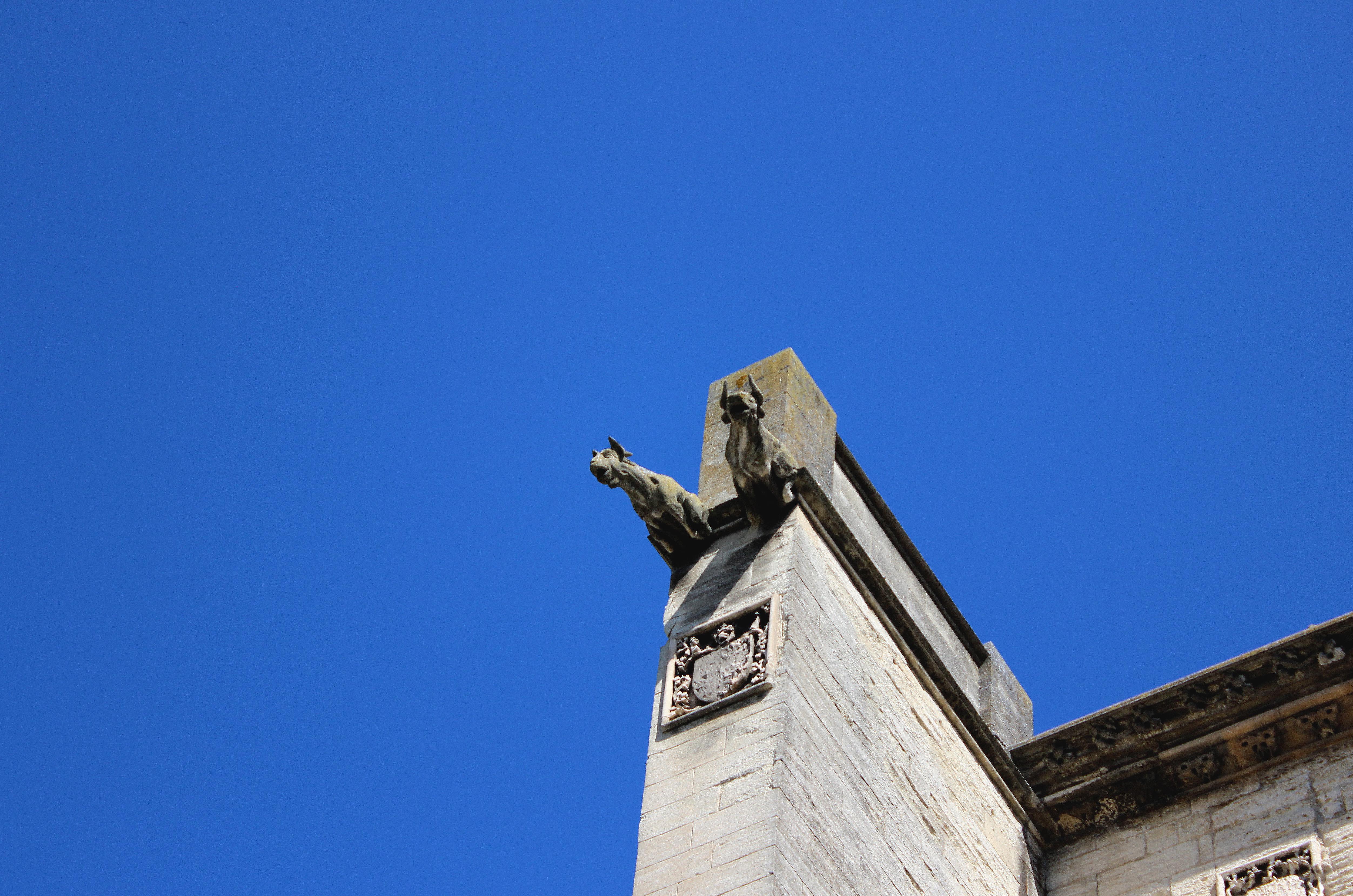 Gargouilles du temple Saint-Martial