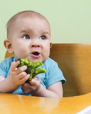 bébé DME alimentation autonome BLW brocoli atelier DME nantes