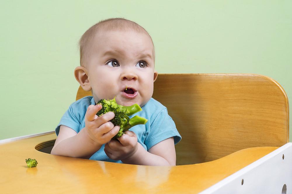 bébé qui mange du brocoli en DME, atelier DME Nantes
