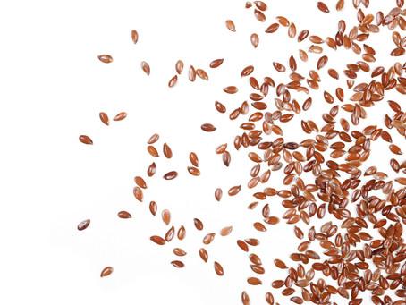 Des graines de lin dans mon assiette